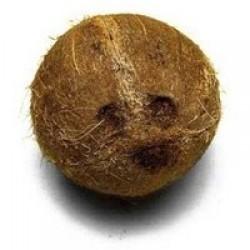 Aroma Coco