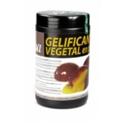 TEXTURA GELIFICANTE VEGETAL PÓ SOSA - 500GR