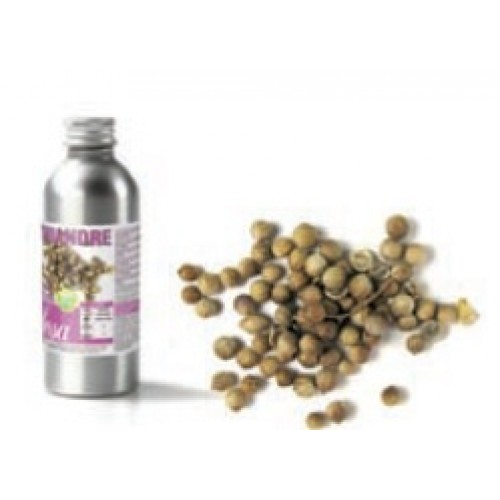 Aroma Coentros Natural - 50gr