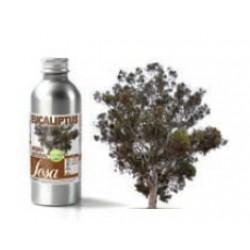 Aroma Eucalipto - 50gr
